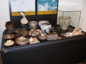 """Ausstellung """"Mit Salz, Beil und Rind auf Shopping-Tour, Vitrine Naturalienhandel 2011, Foto: Stadtarchäologie Hall i.T."""